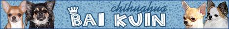chihua.baikuin.com